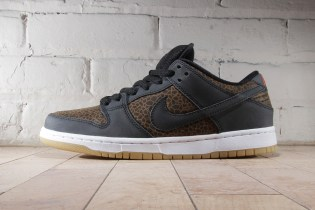 Nike SB Dunk Low Premium Black/Team Orange-Black