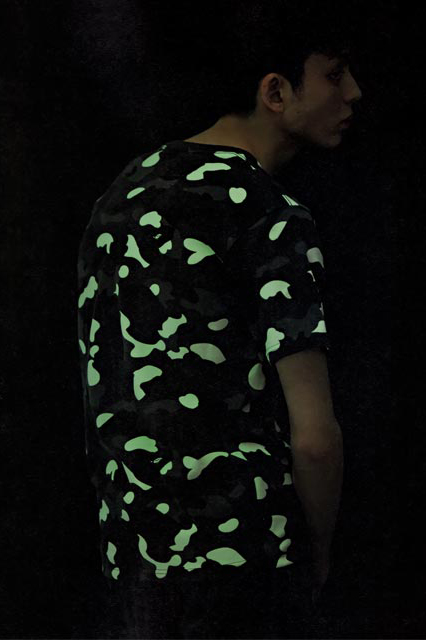 A Bathing Ape 2014 Spring/Summer e-MOOK Lookbook