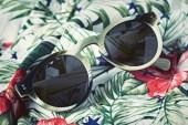 Illesteva 2014 Spring/Summer Collection