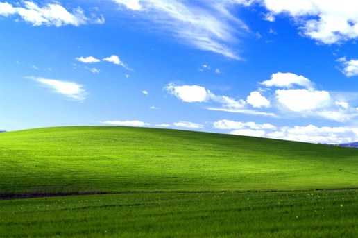 The Story Behind Microsoft's Famous XP Desktop Wallpaper