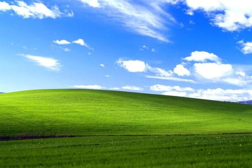 The Story Behind Microsoft's Famous XP Desktop Wallpaper