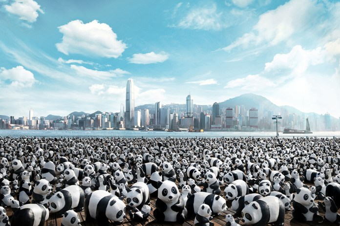 1,600 Panda World Tour Coming to Hong Kong