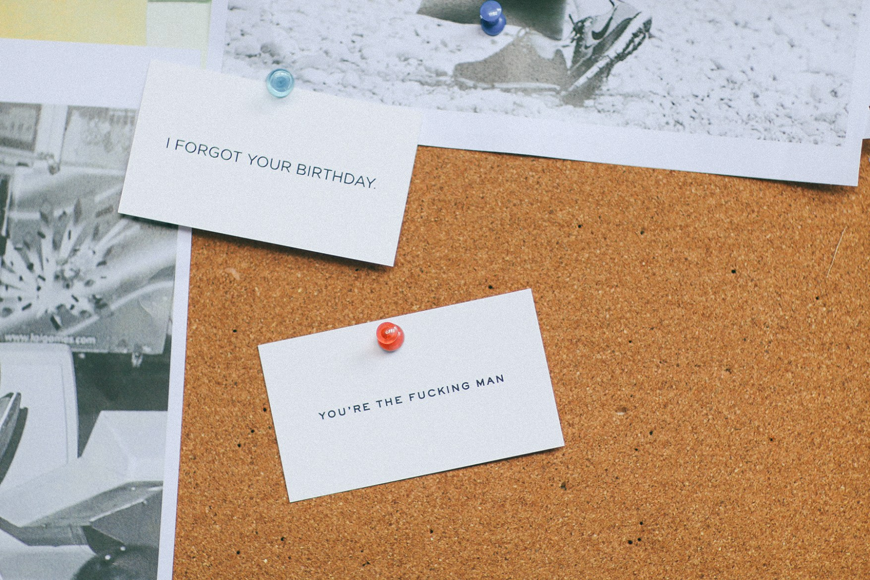 Terrapin Stationers Calling Cards