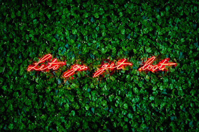 Neon Sign Installations by Olivia Steele