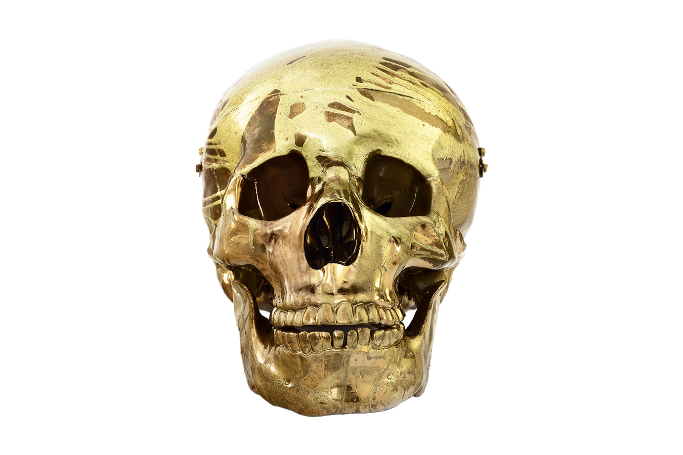 Damien Hirst's 'Magnificent Head'
