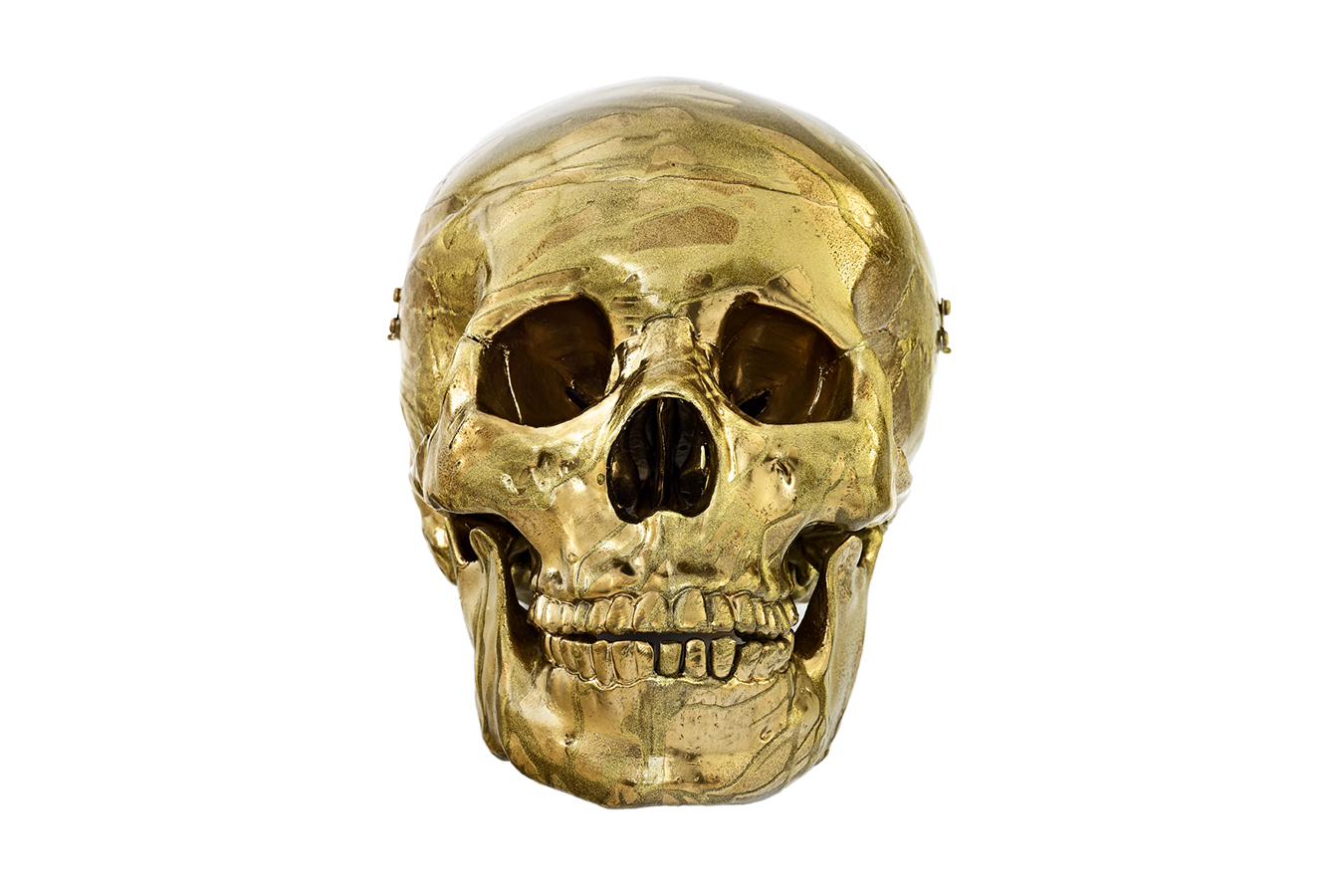 damien hirsts magnificent head