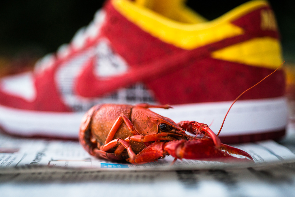 "Rukus x Nike SB Dunk Low QS ""Crawfish"""