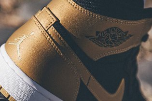 Carmelo Anthony x Air Jordan 1 In The Works?