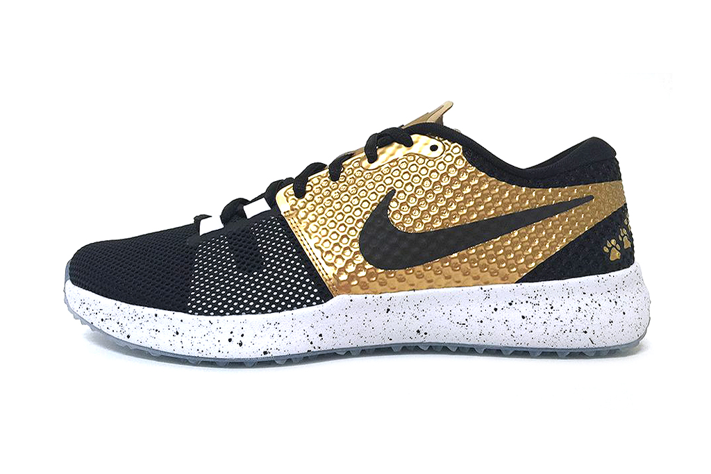 "Nike Zoom Speed Trainer 2 ""Plant High School"""