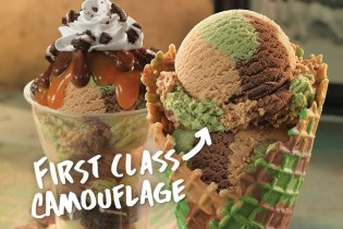 Baskin-Robbins First Class Camouflage Ice Cream