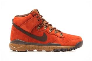 Poler x Nike SB Dunk High OMS