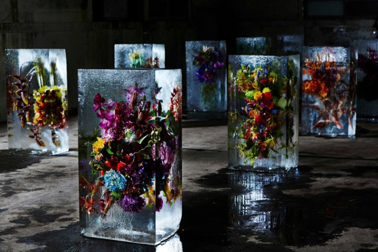 """Azuma Makoto Sets Plants in Inorganic Space in """"Iced Flowers"""""""