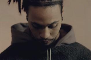 """NID de GUÊPES / N.D.G. STUDIO """"Entering the Nest"""" Teaser Video"""
