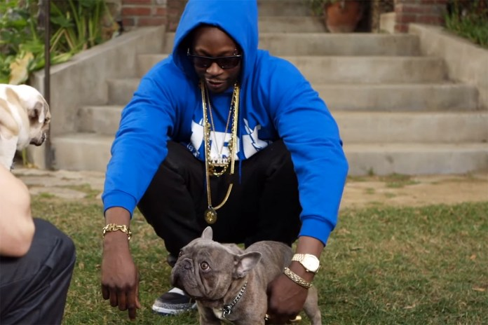 2 Chainz Pets $100K Dog for 'Most Expensivest Shit'