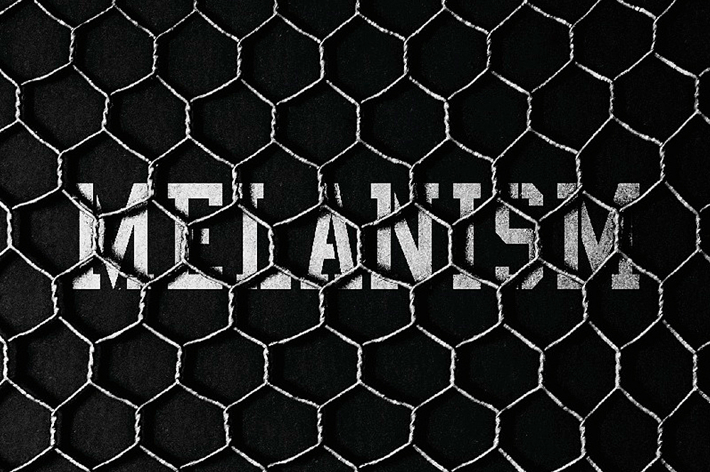 "Black Mountaineering by White Mountaineering to Debut with the POOL aoyama's ""MELANISM"" Installation"