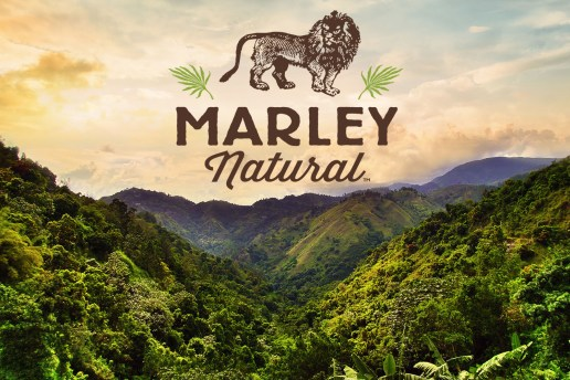 Bob Marley-Branded Marijuana Startup Raises Record $82 Million USD in Funding