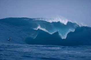 "Surfing the ""Right,"" the World's Scariest Wave"