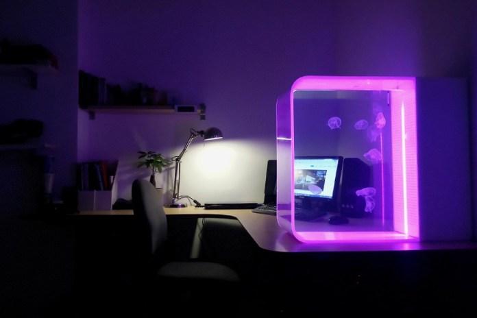 A Sleek LED-Lit Jellyfish Aquarium for Your Home