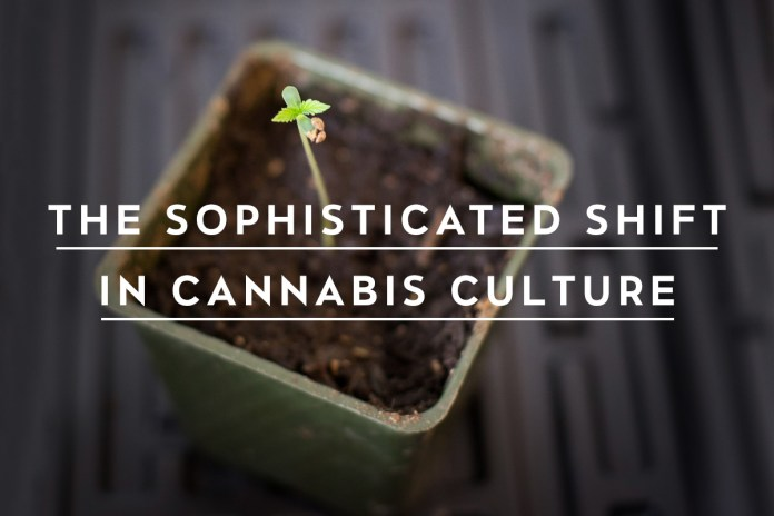 The Sophisticated Shift in Cannabis Culture: Exploring the World of the Conscious Consumer & Highbrow Products