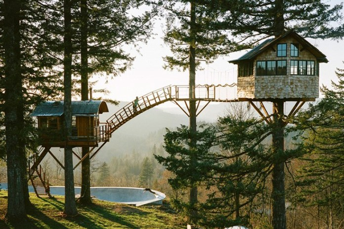This Self-Built Treehouse Has a Skate Bowl and Hot Tub Underneath