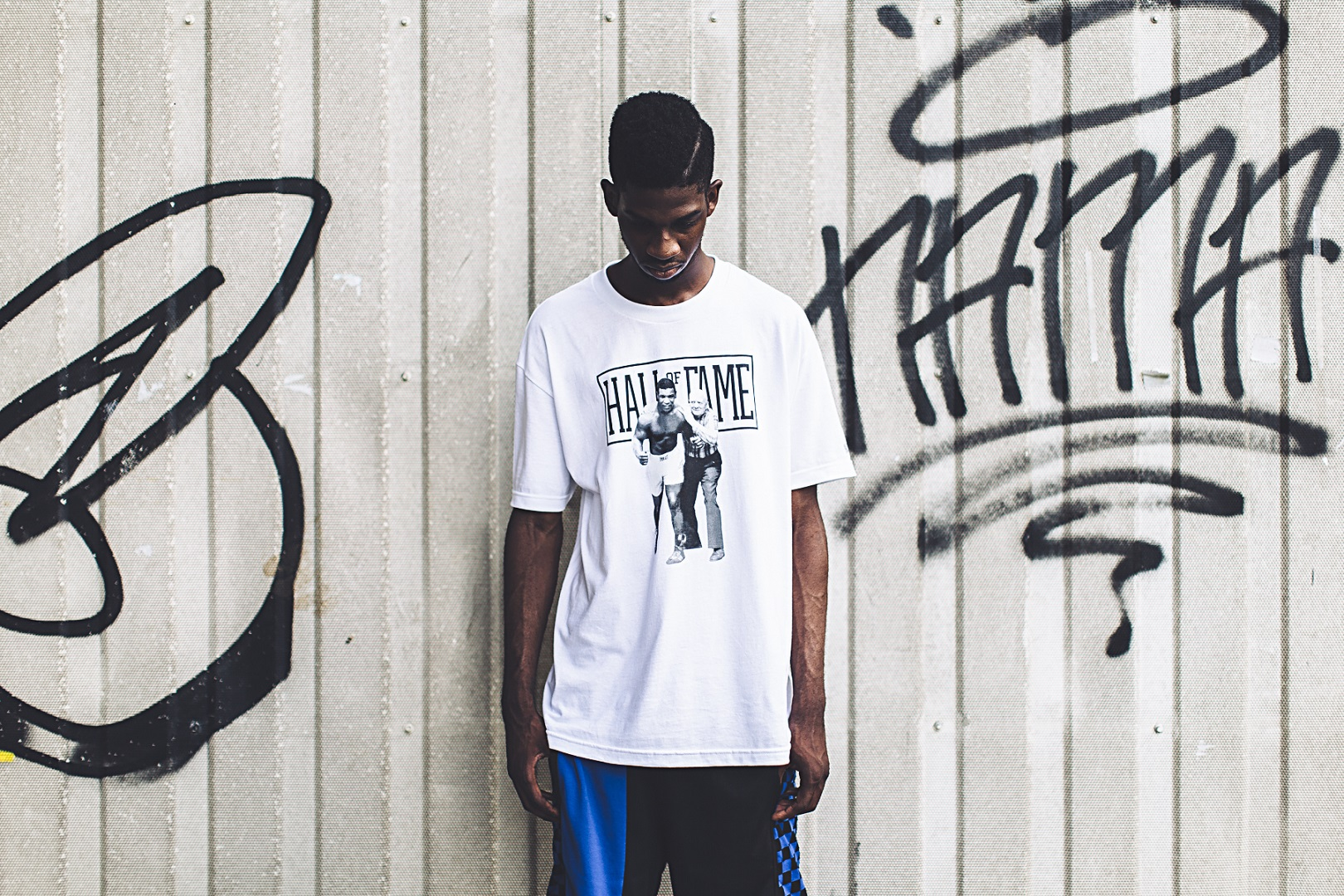 Hall of Fame 2015 Spring/Summer Collection