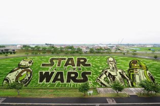 Massive 'Star Wars' Artwork Displayed in Japanese Village's Paddy Field
