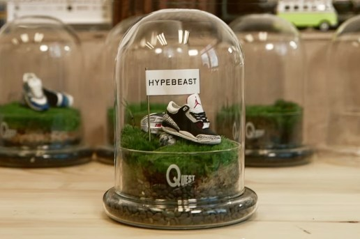 "Process: Preserving ""Jordans"" and Moss With QUEST Terrarium"