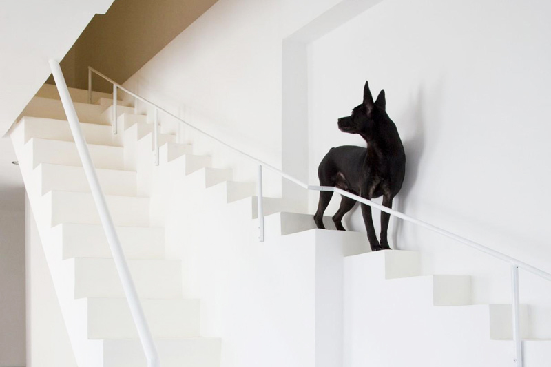 This Vietnamese Home Incorporates a Dog-Friendly Staircase