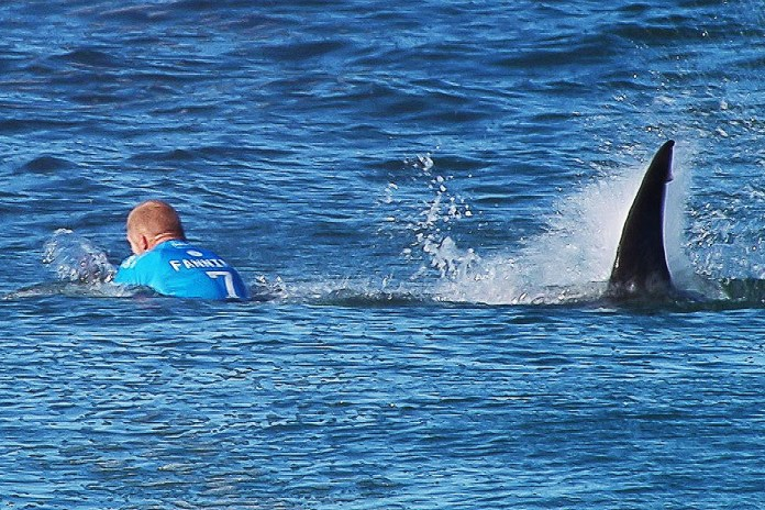 Watch Surfer Mick Fanning Escape a Shark Attack During a Competition