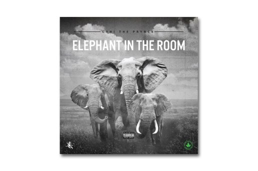 "CyHi The Prynce Takes Shots at Kanye West & G.O.O.D. Music on ""Elephant in the Room"""