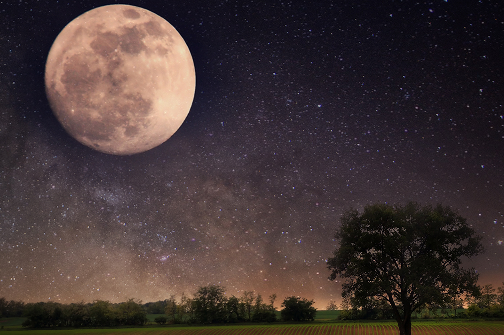 Elysium Space Will Take Your Cremated Remains to Be Buried on the Moon