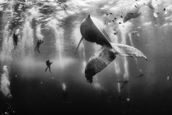 Winners of the 2015 'National Geographic Traveler' Photo Contest