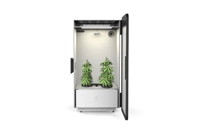 "Leaf ""Plug N Plant"" Cannabis Home Growing System"