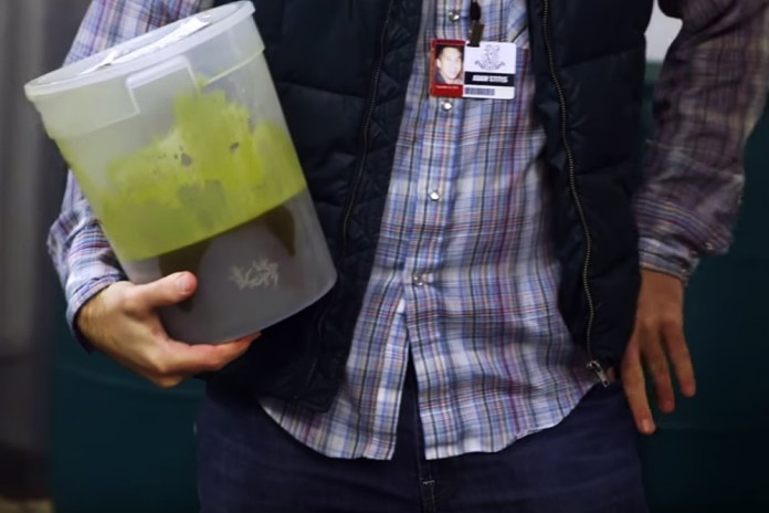The Science Behind Weed-Infused Soda