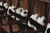 "Ai Weiwei and Jacob Applebaum Present ""Panda To Panda"""