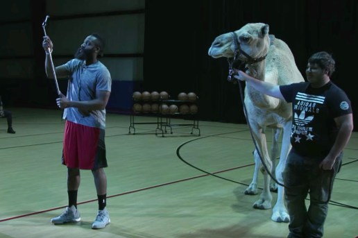 James Harden Takes a Selfie With a Camel in This Twitter Challenge