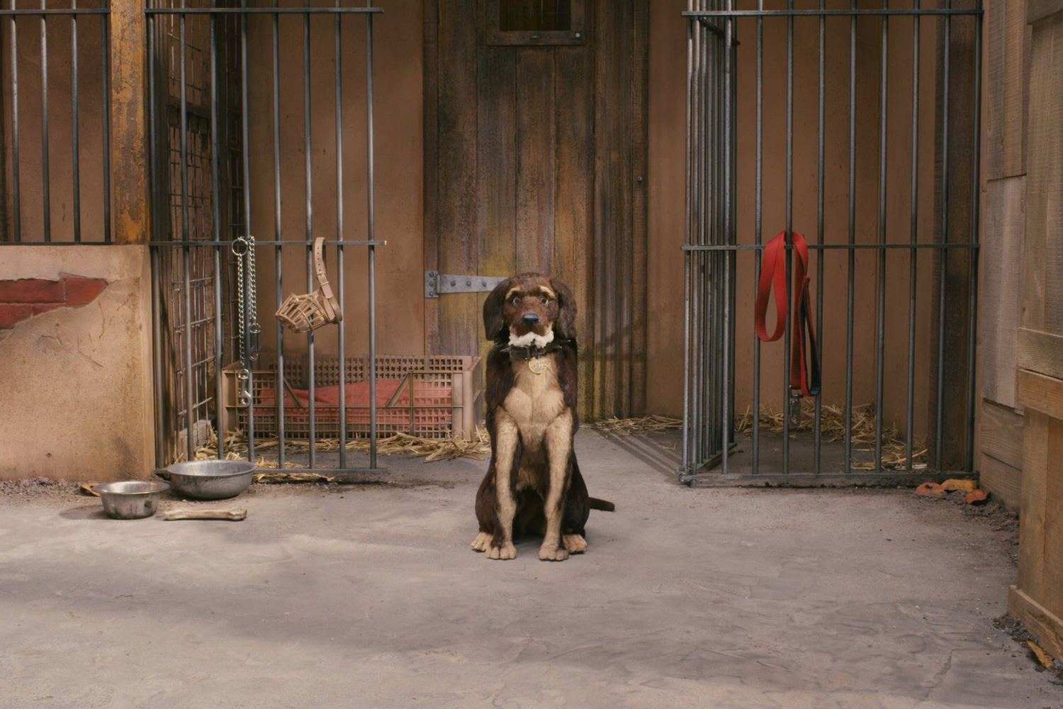 Wes Anderson Is Working on a Stop-Motion Film About Dogs