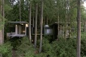 Jim Olson's Stunning Treetop Residence Serves as a Bridge Between Nature and Humans