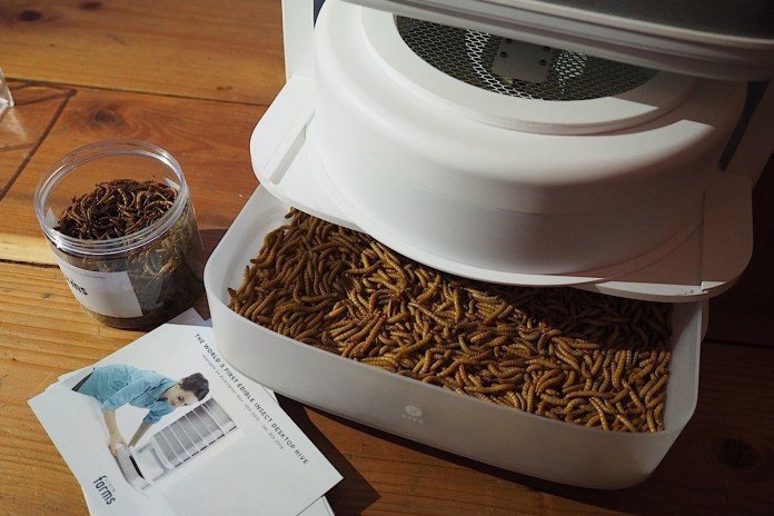 Farm a Lifetime's Supply of Edible Mealworms With This Desktop Hive