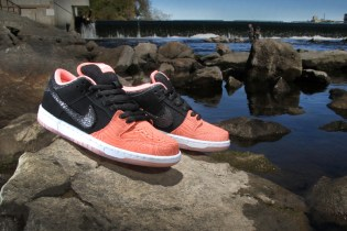 "Premier x Nike SB ""Fish Ladder"" Collection"