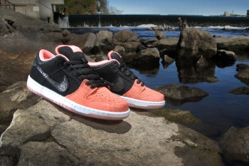 "Premier x Nike SB ""Fish Ladder"" Collection"