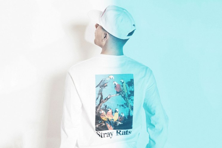 STRAY RATS 2015 Fall/Winter Lookbook
