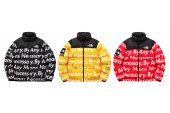 Supreme x The North Face 2015 Fall/Winter Collection