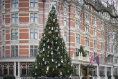 Damien Hirst's Unconventional Christmas Tree for the Connaught Hotel