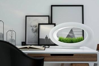 The Grasslamp Is a Sleek and Green Desktop Garden