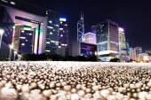 Hong Kong to Be Covered in Thousands of Glowing Flowers in Massive Art Installation