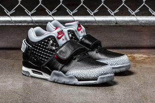 "Nike Air Trainer Cruz ""Silver Wing"""
