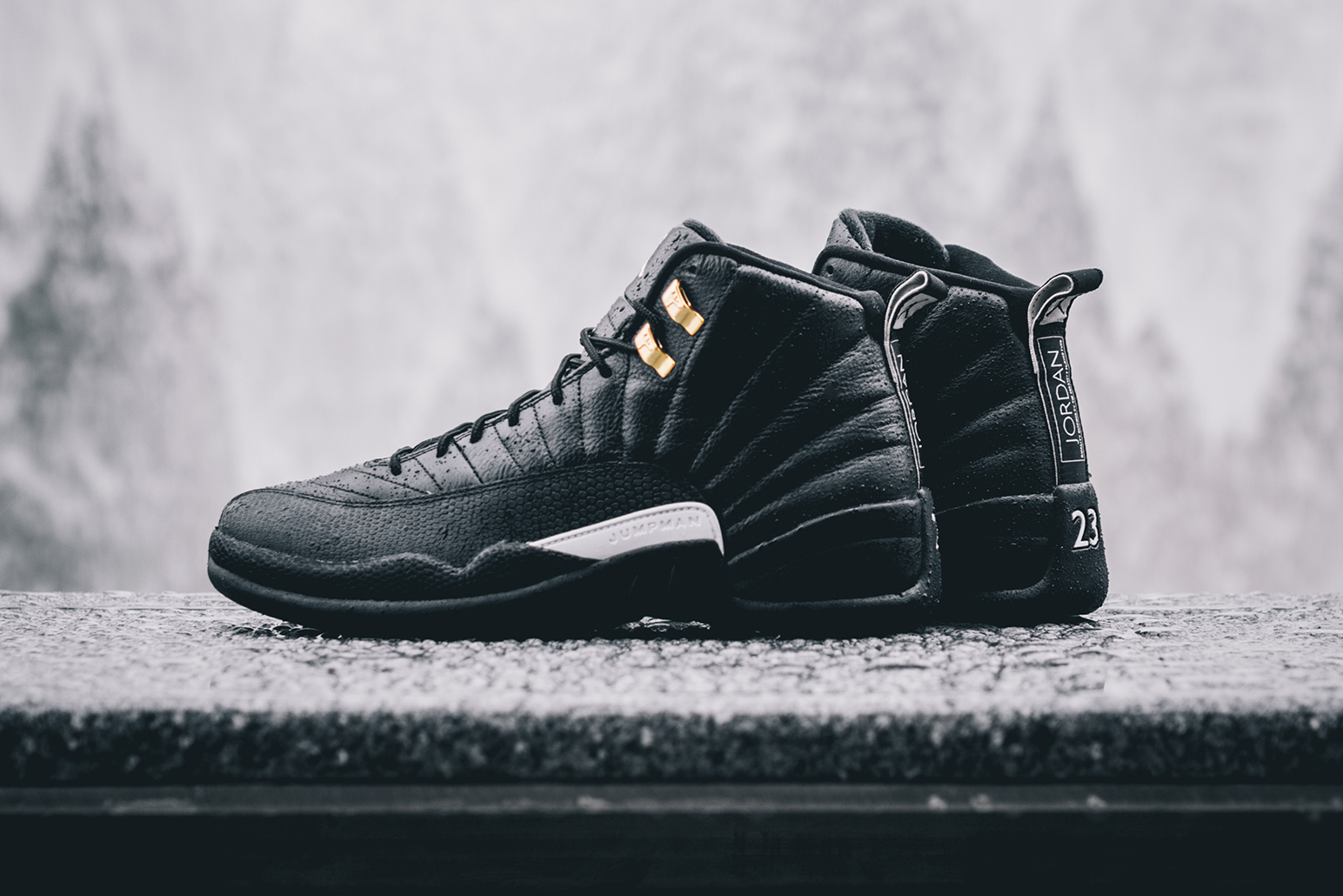 "A Closer Look at the Air Jordan 12 Retro ""The Master"""