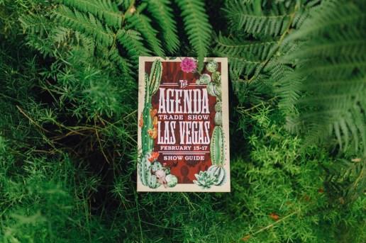 Agenda Las Vegas 2016 Winter Recap