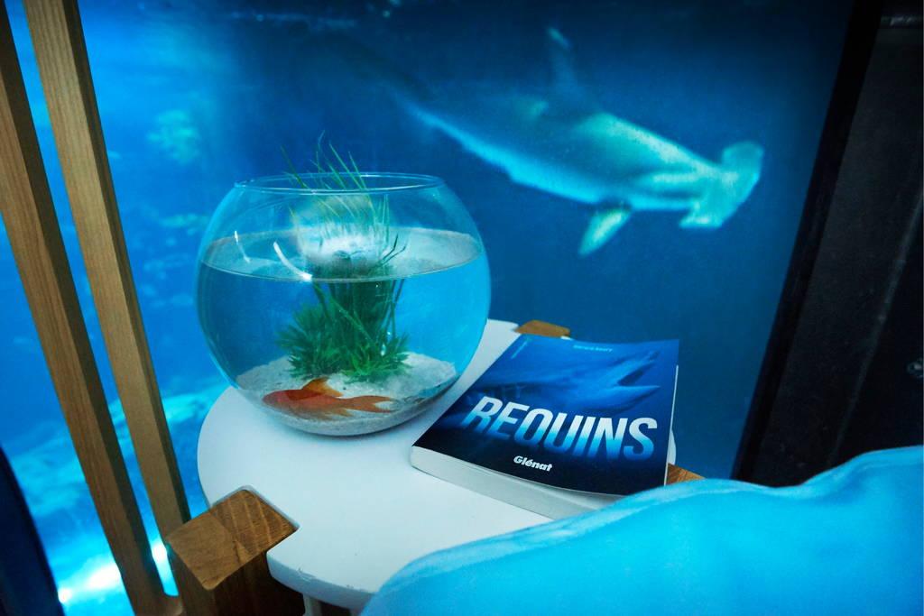 ... Aquarium de Paris in the Shark Aquarium Thanks to airbnb HYPEBEAST